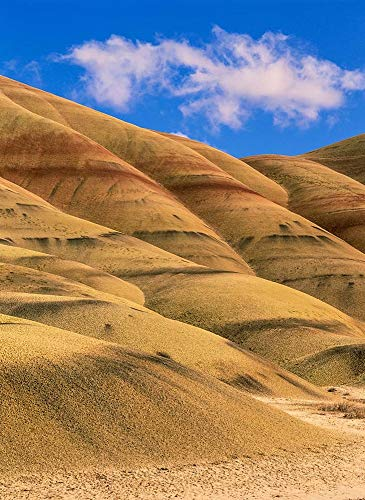 Painted Hills Unit, John Day Fossil Beds National Monument, Oregon by Howie Garber/Danita Delimont Art Print, 9 x 12 inches (John Day Fossil Beds National Monument Oregon)