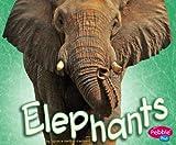 Elephants, Sydnie Meltzer Kleinhenz, 1429612452