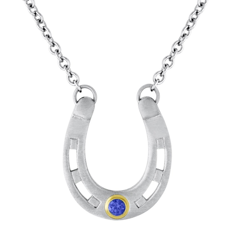 ce55db10f487c Amazon.com: Esty & Me Horseshoe Pendant - September: Jewelry