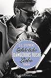 Dangerous Rush. Gefährliche Liebe: Die Rush-Trilogie 2 - Roman