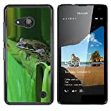 A-type Colorful Printed Hard Protective Back Case Cover Shell Skin for NOKIA Lumia 550 (Green Toad Forest Leaf Tropical)