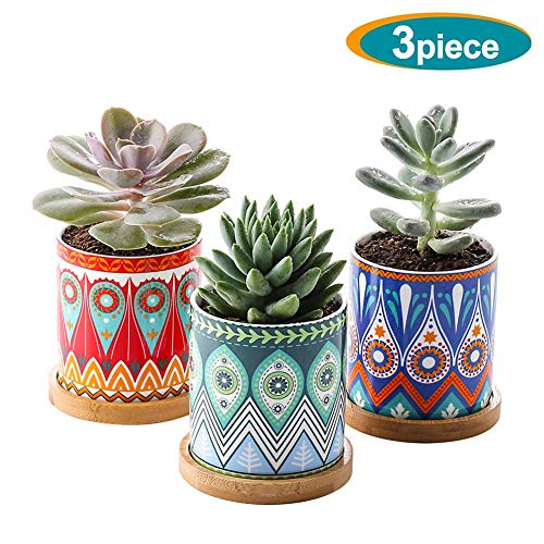 Succulent Planter, 3 Inch Mini Succulent Pots Mandalas Pattern Ceramic Tiny Plant Pots for Cactus, with Drainage Hole, Bamboo Trays, Premium Gift for Family and Friends, Set of 3