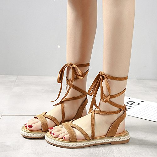 X for Sandals Women Suede Gladiator Tan Y up Lace Leather Strappy Shoes M Flat TwqpI5RgW