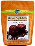 Authentic Foods Chocolate Chip Muffin Mix 2 Pack
