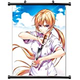 Food Wars (Shokugeki no Soma) Anime Fabric Wall Scroll Poster (16x21) Inches