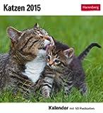 Katzen Postkartenkalender 2015: Kalender mit 53 Postkarten