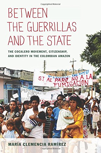 Read Online Between the Guerrillas and the State: The Cocalero Movement, Citizenship, and Identity in the Colombian Amazon pdf