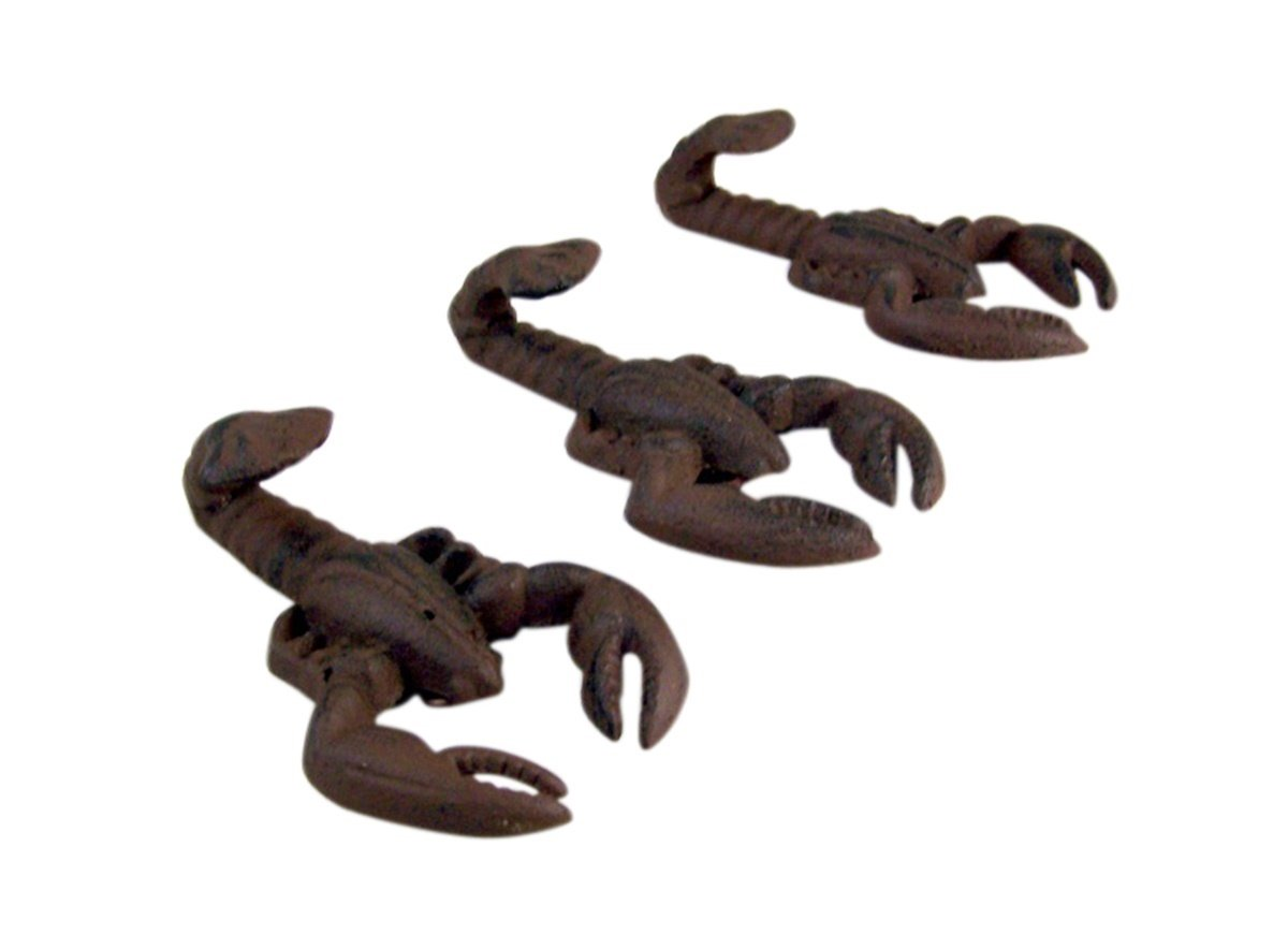 Crawfish Tail Cast Iron Wall Hook 2 1/2 Inch (Set of 3)