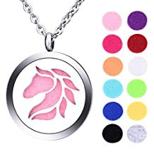Hollow Horse Essential Oils Aromatherapy Diffuser Locket Necklace