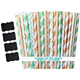 Outside the Box Papers Peach and Mint Green Chevron Polka Dot and Striped Paper Straws 7.75 Inches 100 Pack Peach, Mint Green