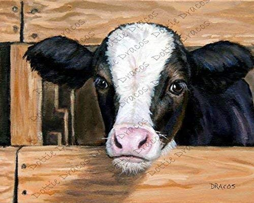 Cow Art Print, Holstein Cow, Calf, Dairy Cow, Cow Art, Cow Paintings, Farm Animal Art, Cows, Farm Art, Black and White Cow, Art for Children, Watermark NOT on your Print