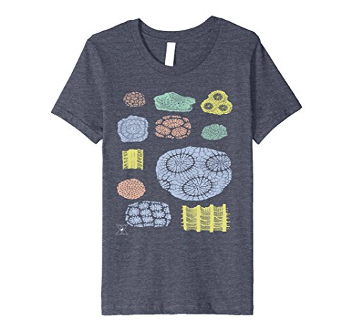 Kids Coral Fossils by EncycloArt | Ocean Ecosystem Marine Biology 4 Heather Blue (Kids Eco Heather)