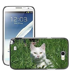 Etui Housse Coque de Protection Cover Rigide pour // M00112930 Ojos Animales Gato blanco mirada de // Samsung Galaxy Note 2 II N7100