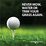Mega Grass 3'W x 8'L Artificial Grass for Golf Putts Sports Outdoor or Indoor Green Faux Fake Grass Decor | 24 SqFt 0.75'' Tall Blades 60oz Face | Realistic Artificial Grass Mat Rug Pad Carpet Turf