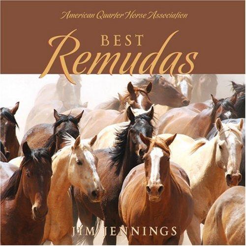 Download Best Remudas PDF