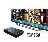 Arabia TV Box Super HD Receiver (Arabic TV Box with 3500 Channel) جهاز العائلة للقنوات العربية...