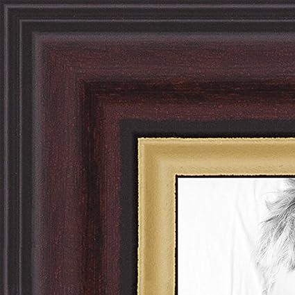 Amazon Arttoframes 14x17 Inch Mahogany And Gold Slope Frame