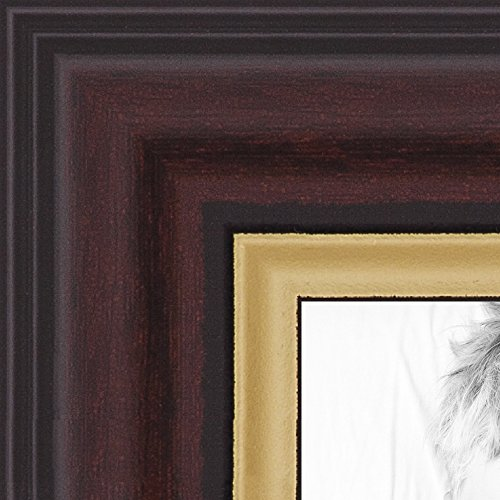 ArtToFrames 14x17 inch Mahogany and Gold Slope Frame  Picture Frame, 2WOM0066-83120-YMAH-14x17