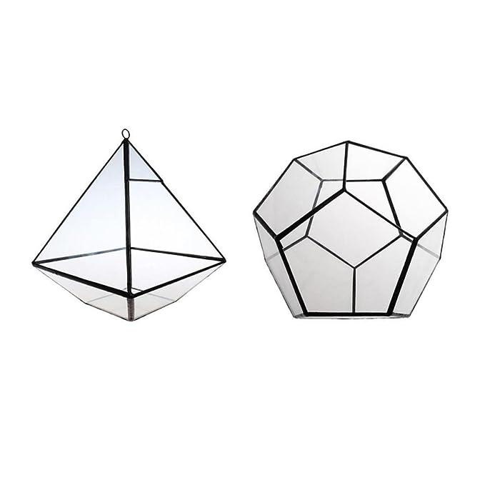 Amazon Com Homyl 2pcs Clear Geometric Terrarium Box Tabletop