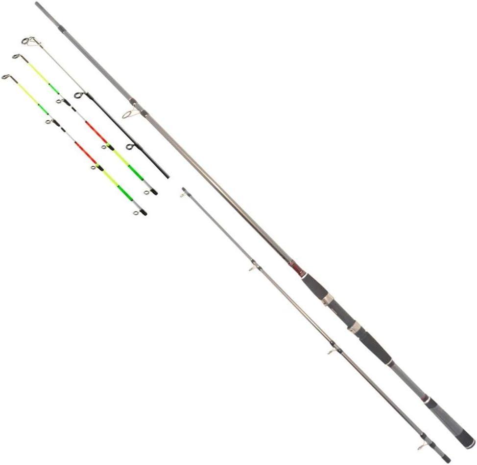 Daiwa Seahunter X Variotip 3,00m 30-110g