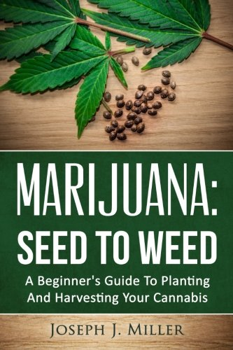 Marijuana Seed To Weed  A Beginner's Guide To Planting And Harvesting Your Cannabis