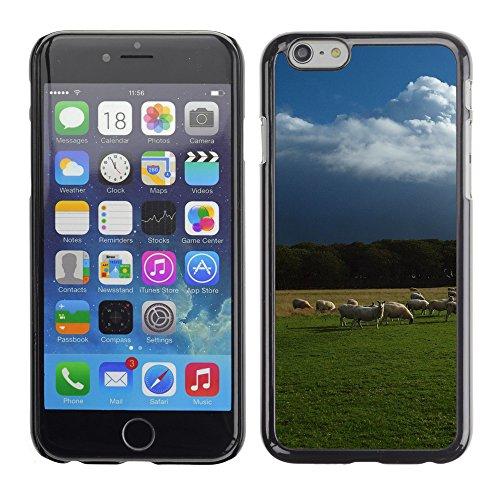 "Premio Sottile Slim Cassa Custodia Case Cover Shell // V00003807 moutons // Apple iPhone 6 6S 6G PLUS 5.5"""