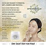 Organic Aloe Vera Moisturizing Cream Body and Face Moisturizer For Acne, Psoriasis, Rosacea, Eczema, Aging, Itchy Dry or Sensitive Skin Care Cream, Skin Care Face Natural Cream (6.7 oz)