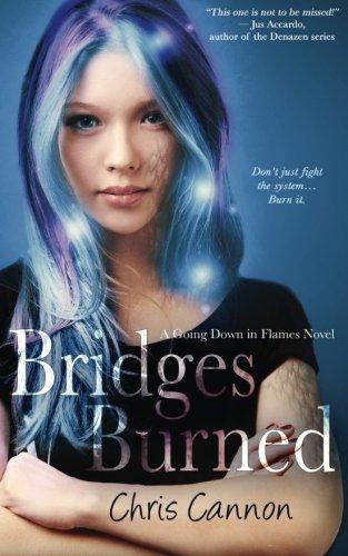 book cover of Bridges Burned