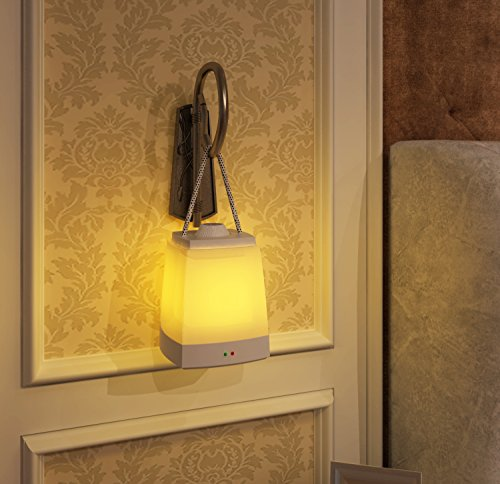 Brightowm Induction Bathrooms Stairwells Nightlight product image