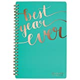 at-A-Glance 2018-2019 Academic Year Weekly & Monthly Planner, Small, 4-7/8 x 8, Aspire, Mint (1022-200A-42_1)