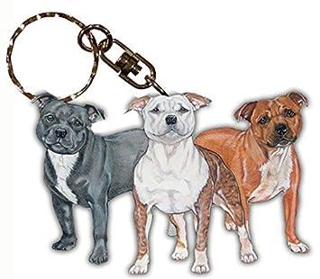 Amazon.com: American Staffordshire terrier perro raza de ...
