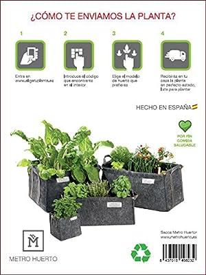 Experiencia Huerto Urbano Saco Tomatero + Plantas ECO: Amazon.es ...