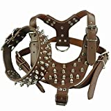 Prettier Care Coffee Studded Leather Dog Harness&Collar Set For Pitbull Bully Size : L