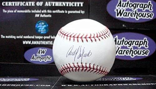 Autograph Warehouse 31930 Carlos Delgado Autographed Baseball (Carlos Delgado Autographed Baseball)