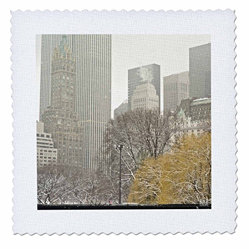 3dRose qs_10306_1 Snow Blizzard in Central Park Manhattan New York City Ice Skate Ring-Quilt Square, 10 by 10-Inch