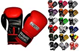 Ring to Cage Gym Training Stand-Up Boxing Gloves (Red/Black, Regular Weighs 12oz)