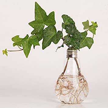 gmakerr bombilla forma soporte botella de flor de cristal florero hidropónicos recipiente