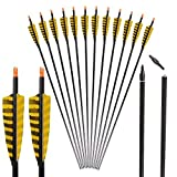 I-sport 32 inch Carbon Arrows with 4-Inch Feather Fletching Replaceable Tips for Traditional