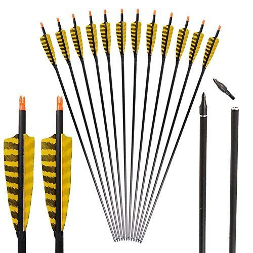 I-sport 32 inch Carbon Arrows with 4-Inch Feather Fletching Replaceable Tips for Traditional Bow Recurve Bow Longbow Targeting 6-Pack