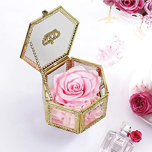 (SANRAN Eternal Flower | Preserved Rose, Real Forever Rose in Delicate Metal Box, for Mom, Girlfriend, Her, Mother's Day, Valentine's Day, Thanksgiving Day, Christmas, Anniversary (Bright Pink))