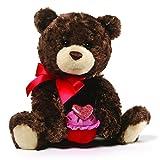 valentines bear for baby - GUND Sprinkles Valentine's Day Teddy Bear Stuffed Animal Plush, Brown, 8