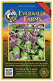Everwilde Farms - 2000 Cinnamon Basil Herb Seeds - Gold Vault Jumbo Seed Packet