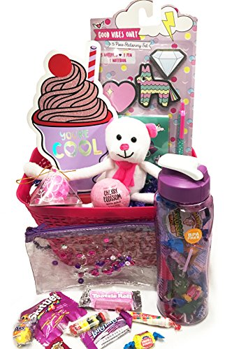 Gifts For Teen Girl - Tween Girl - Sheu0027s So Cool Gift Basket with Polar Bear Plush Water Bottle Candy +More - Perfect for Birthday Get Well ...  sc 1 st  Galleon : cool gift baskets - princetonregatta.org