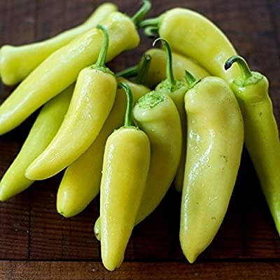 David's Garden Seeds Pepper Specialty Sweet Early Hungarian SL6332 (Yellow) 50 Organic Seeds