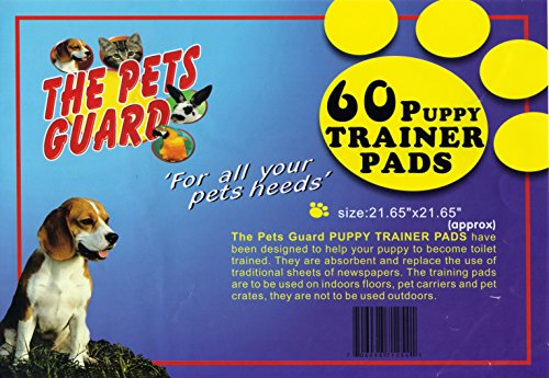 The Pets Guard, Training Potty Pads for Pets Dogs and Cats, Durable and Absorbent, Size 21 x 21 Inches, 60 Count Review