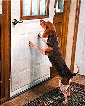Door Scratch Protector - Large 35\u0026quot ... & Door Scratch Protector - Large 35\