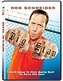 NEW Big Stan (DVD)