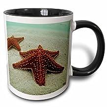 3dRose mug_10458_4 Sea star, San Blas Islands Two Tone Black Mug, 11 oz, Black/White