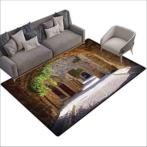 Bath Rug Tuscan Ancient Italian Street in a Small Provincial Town of Tuscan Italy European Hard and wear Resistant W5' x L6'10 Brown Green Grey