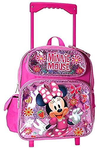 Top 10 school rolling backpack for girls 10-12 for 2020